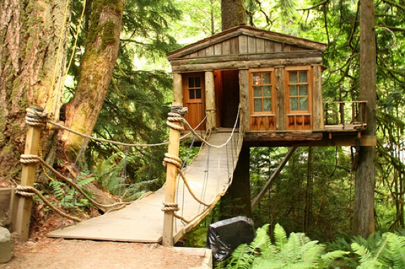 Treehouse Point 1 The Is