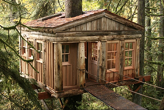 The Treehouse Is Point